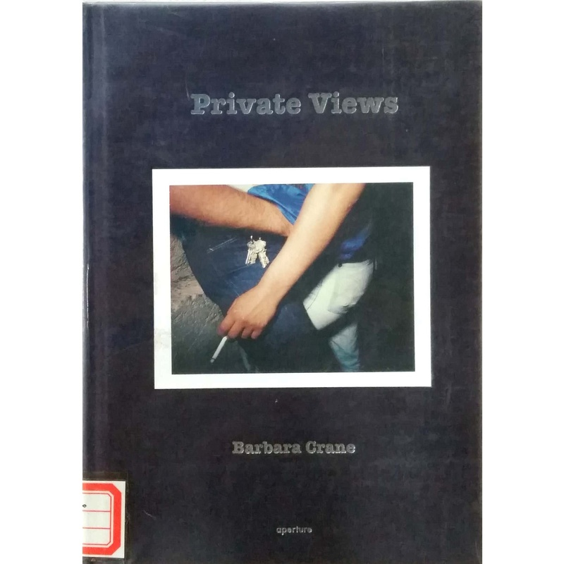 Private Views-Barbara Crane